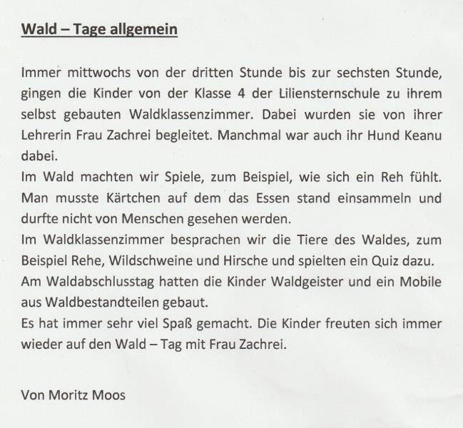 bericht-waldtage-moritz-a